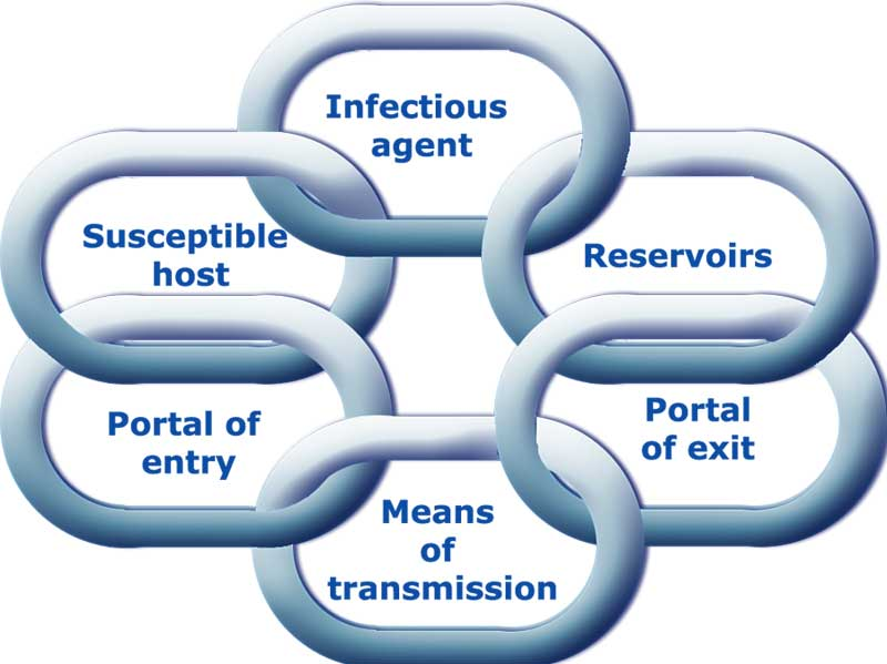 infection control In october 2010 the australian guidelines for the prevention and control of infection in healthcare were released by the national health and medical research council.